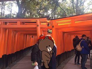 fushimi2_R.jpg