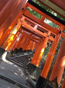 fushimi_R.jpg