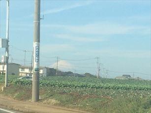 misaki5_R.jpg
