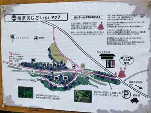 ajisai4_R.jpg