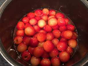 cherry2_R.jpg