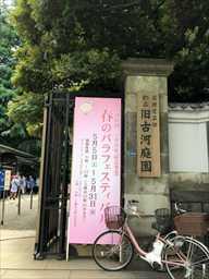 furukawa_R.jpg