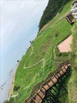 wajima4_R.jpg